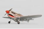 Радиоуправляемый самолет P-40 Warhawk 30cc/EP ARF (PH159)